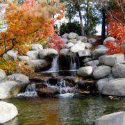Kamen naj ostane v vodi! / Foto: Pexels