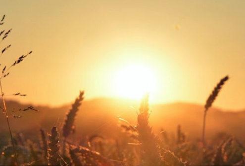 NASA: Julij je bil najtoplejši mesec vseh časov
