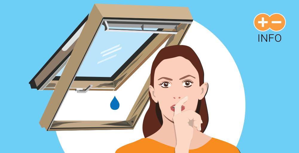 Strešna okna - vzdrževanje / Pozitivna energija / Ilustracija: Branko Baćović
